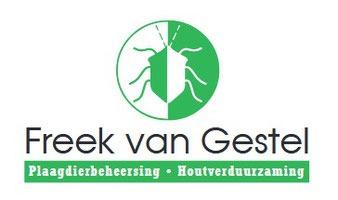 Drie tips om muizen te bestrijden in Tilburg